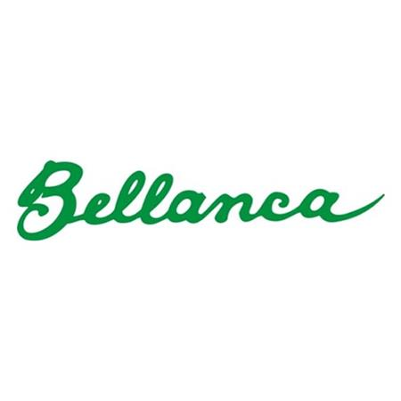 Champion / Bellanca
